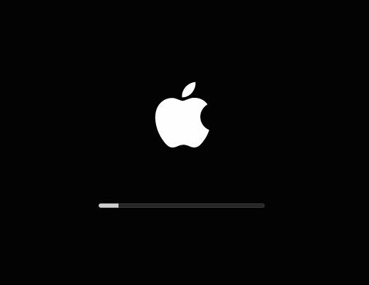 מחשב אפל לא עולה למערכת ההפעלה